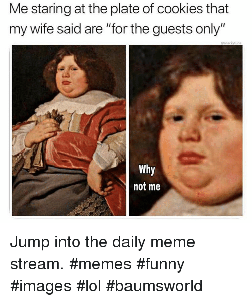 "Cookies, Funny, and Lol: Me staring at the plate of cookies that  my wife said are ""for the guests only""  @snackytuna  Why  not me Jump into the daily meme stream. #memes #funny #images #lol #baumsworld"