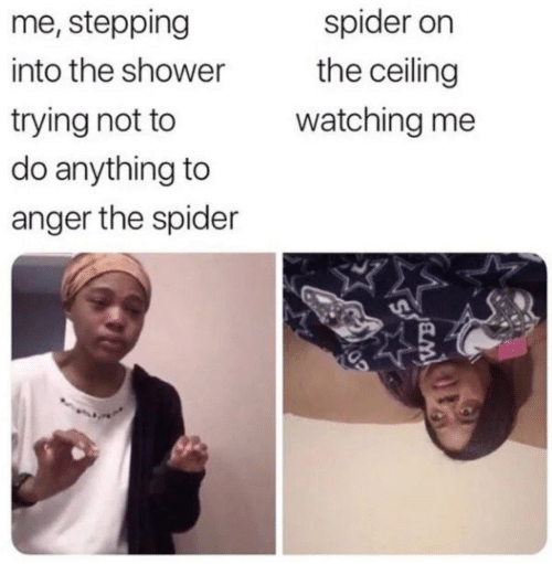Stepping: me, stepping  spider on  the ceiling  into the shower  trying not to  do anything to  watching me  anger the spider