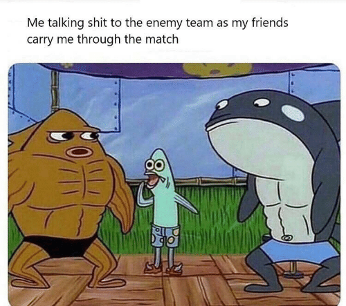 Match: Me talking shit to the enemy team as my friends  carry me through the match