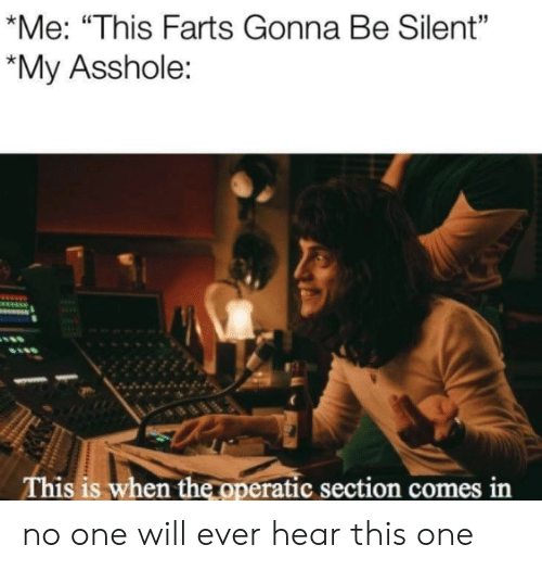 "Asshole, One, and Will: *Me: ""This Farts Gonna Be Silent""  *My Asshole:  This is when the operatic section comes in no one will ever hear this one"