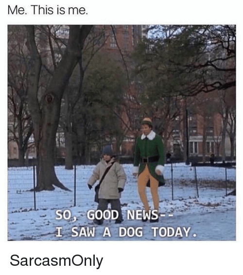 Funny, Memes, and News: Me. This is me  135  soy GOOD NEWS  SAW A DOG TODAY SarcasmOnly
