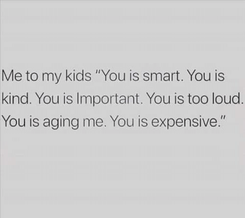 """Memes, Kids, and 🤖: Me to my kids """"You is smart. You is  kind. You is Important. You is too loud.  You is aging me. You is expensive."""""""