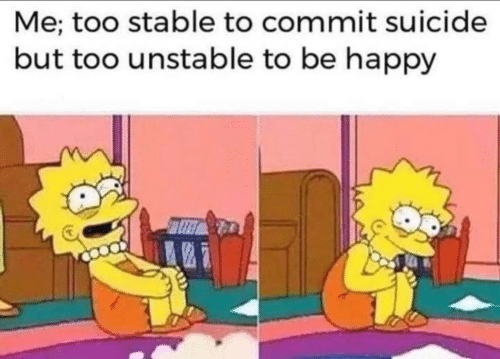 Commit Suicide: Me; too stable to commit suicide  but too unstable to be happy