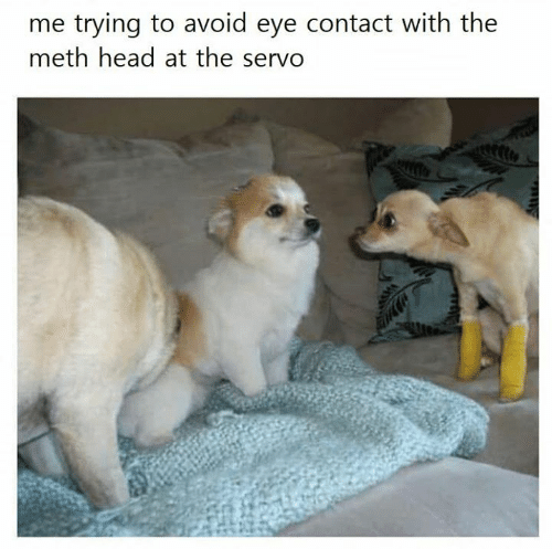 avoid-eye-contact: me trying to avoid eye contact with the  meth head at the servo