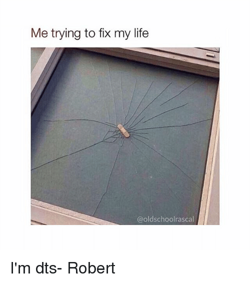 dts: Me trying to fix my life  @oldschoolrascal I'm dts- Robert