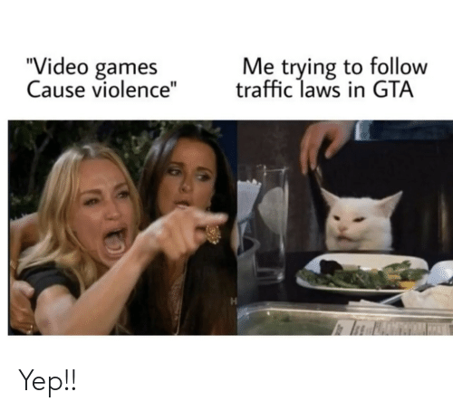 "Traffic, Video Games, and Games: Me trying to follow  traffic laws in GTA  ""Video games  Cause violence"" Yep!!"