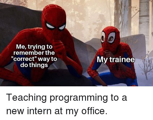 """Office, Programming, and Teaching: Me, trying to  remember the  correct"""" way to  do things  My trainee Teaching programming to a new intern at my office."""