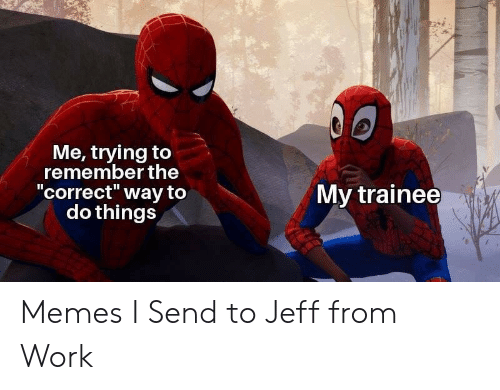 "Memes, Work, and Remember: Me, trying to  remember the  ""correct"" way to  do things  II  My trainee Memes I Send to Jeff from Work"