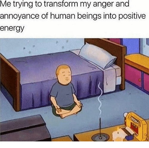 annoyance: Me trying to transform my anger and  annoyance of human beings into positive  energy