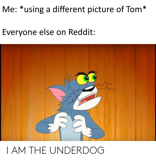 Me *Using a Different Picture of Tom* Everyone Else on Reddit I AM
