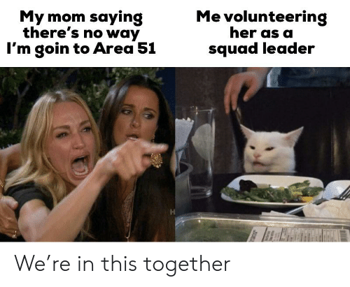 Reddit, Squad, and Mom: Me volunteering  her as a  My mom saying  there's no way  I'm goin to Area 51  squad leader We're in this together