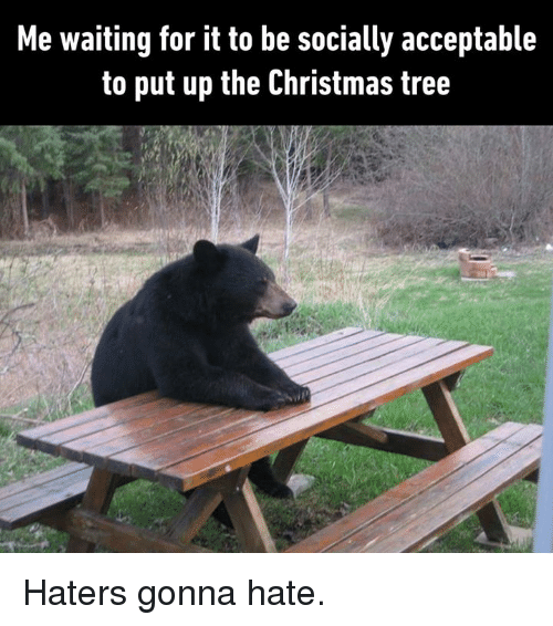Christmas, Dank, and Christmas Tree: Me waiting for it to be socially acceptable  to put up the Christmas tree Haters gonna hate.