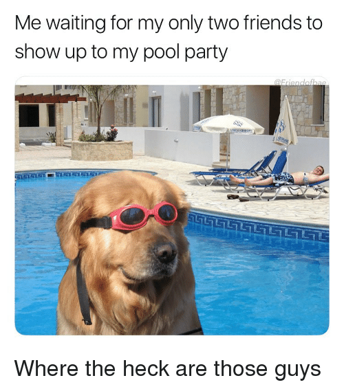 Friends, Funny, and Party: Me waiting for my only two friends to  show up to my pool party Where the heck are those guys