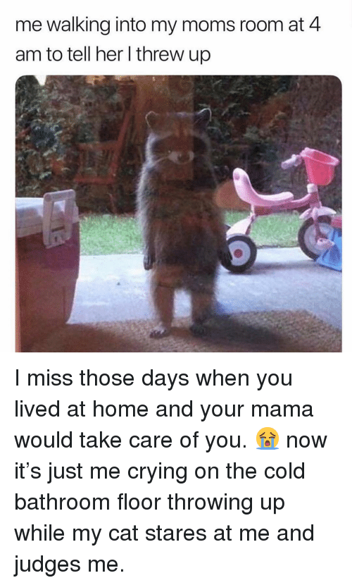 Crying, Moms, and Home: me walking into my moms room at 4  am to tell her l threw up I miss those days when you lived at home and your mama would take care of you. 😭 now it's just me crying on the cold bathroom floor throwing up while my cat stares at me and judges me.