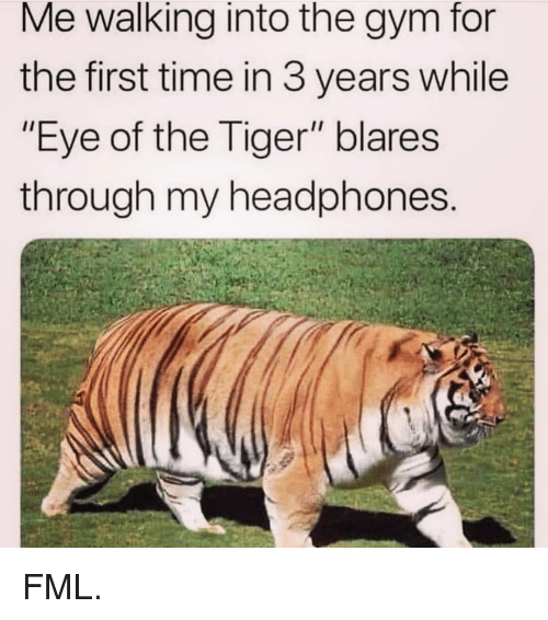 """Fml, Gym, and Memes: Me walking into the gym for  the first time in 3 years while  """"Eye of the Tiger"""" blares  through my headphones FML."""