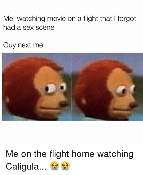Memes, Sex, and Flight: Me: watching movie on a flight that I forgot  had a sex scene  Guy next me: Me on the flight home watching Caligula... 😭😭