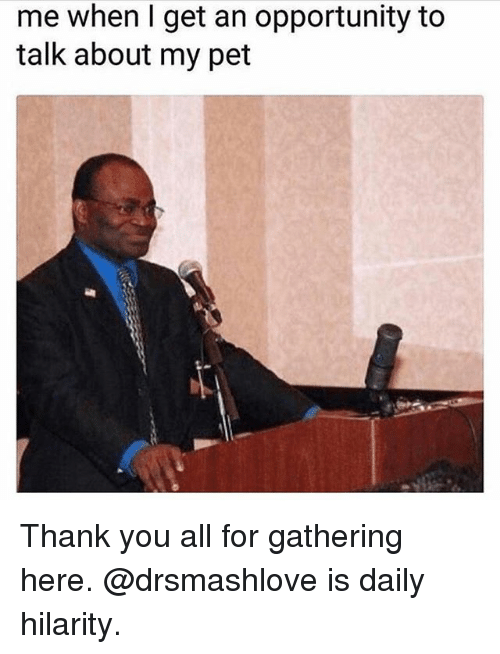 Memes, Thank You, and Opportunity: me when I get an opportunity to  talk about my pet Thank you all for gathering here. @drsmashlove is daily hilarity.
