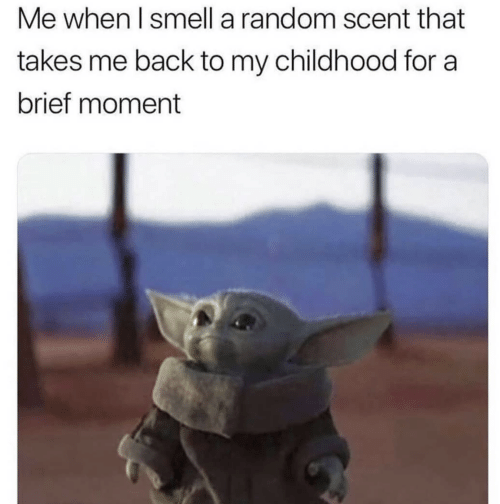 Smell, Back, and Random: Me when I smell a random scent that  takes me back to my childhood for a  brief moment