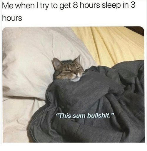 "Memes, Bullshit, and Sleep: Me when I try to get 8 hours sleep in 3  hours  ""This sum bullshit."""