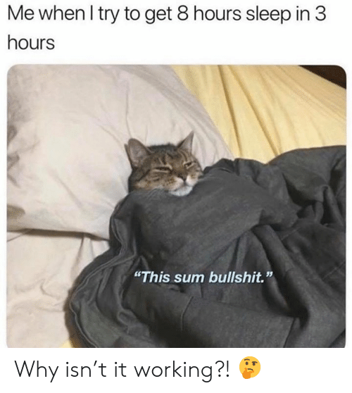 "Bullshit, Sleep, and Working: Me when I try to get 8 hours sleep in 3  hours  ""This sum bullshit."" Why isn't it working?! 🤔"