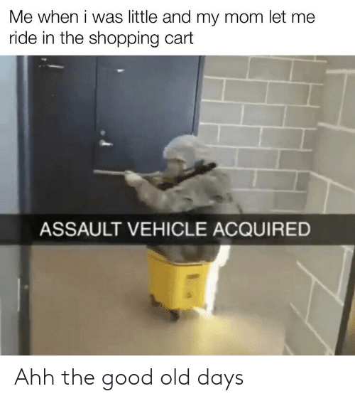 When I Was: Me when i was little and my mom let me  ride in the shopping cart  ASSAULT VEHICLE ACQUIRED Ahh the good old days