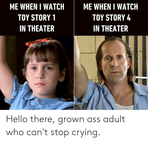 watch me: ME WHEN I WATCH  ME WHEN I WATCH  TOY STORY 4  TOY STORY 1  IN THEATER  IN THEATER Hello there, grown ass adult who can't stop crying.