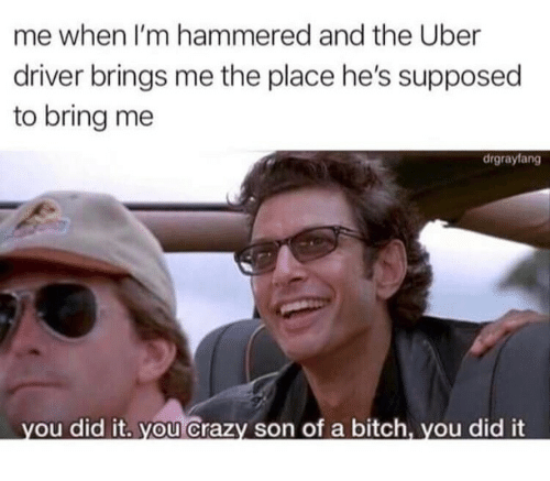 hammered: me when I'm hammered and the Uber  driver brings me the place he's supposed  to bring me  drgrayfang  ou did it. you Crazy son of a bitch, you did it