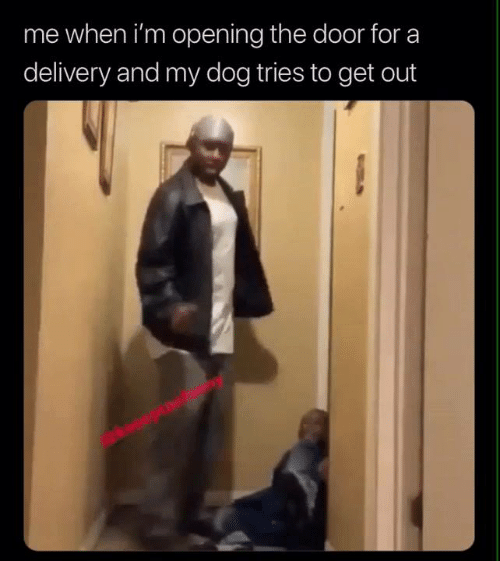 Dank, 🤖, and Dog: me when i'm opening the door for a  delivery and my dog tries to get out