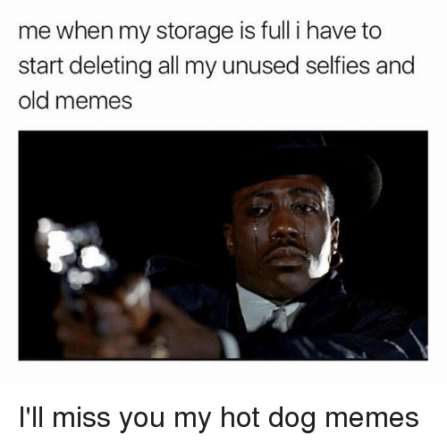 Ill Miss You: me when my storage is full i have to  start deleting all my unused selfies and  old memes I'll miss you my hot dog memes