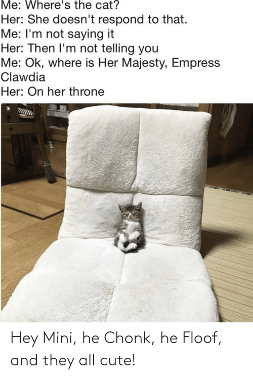 Wheres: Me: Where's the cat?  Her: She doesn't respond to that.  Me: I'm not saying it  Her: Then I'm not telling you  Me: Ok, where is Her Majesty, Empress  Clawdia  Her: On her throne Hey Mini, he Chonk, he Floof, and they all cute!
