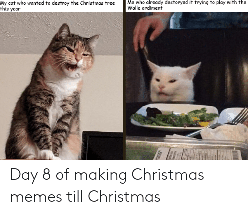 walle: Me who already destoryed it trying to play with the  Walle ordiment  My cat who wanted to destroy the Christmas tree  this year Day 8 of making Christmas memes till Christmas