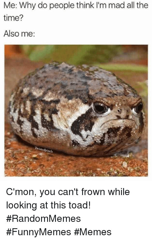 frown: Me: Why do people think I'm mad all the  time?  Also me C'mon, you can't frown while looking at this toad! #RandomMemes #FunnyMemes #Memes