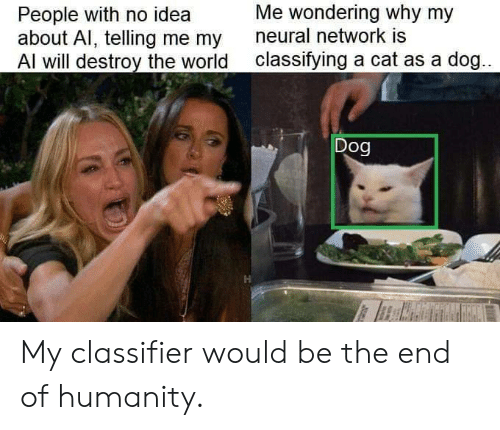 World, Humanity, and Idea: Me wondering why my  People with no idea  about Al, telling me my  Al will destroy the world  neural network is  classifying a cat as a dog...  Dog My classifier would be the end of humanity.