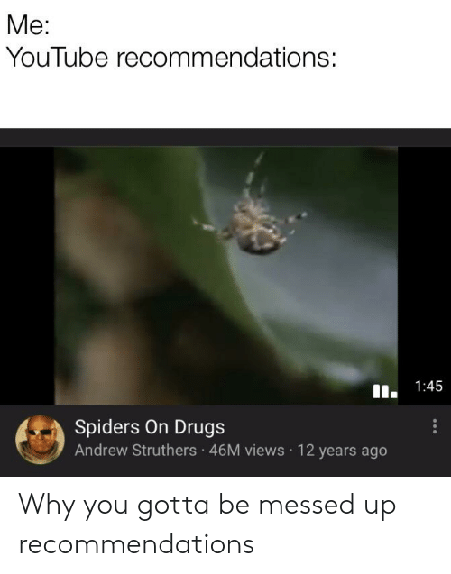 Me YouTube Recommendations 145 Spiders on Drugs Andrew