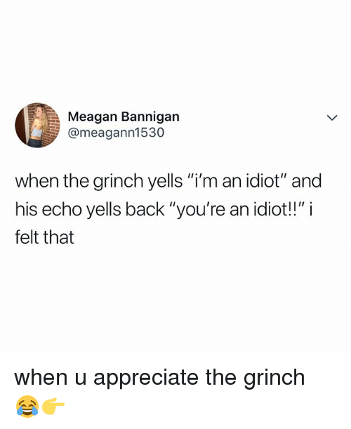 "im an idiot: Meagan Bannigan  @meagann1530  when the grinch yells ""i'm an idiot"" and  his echo yells back ""you're an idiot!!"" i  felt that when u appreciate the grinch 😂👉"
