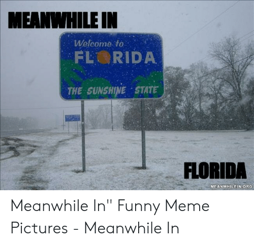 """Funny, Meme, and Florida: MEANIHILE IN  Welcome to  THE SUNSHINE STATE  FLORIDA  MEANWHILEIN ORG Meanwhile In"""" Funny Meme Pictures - Meanwhile In"""