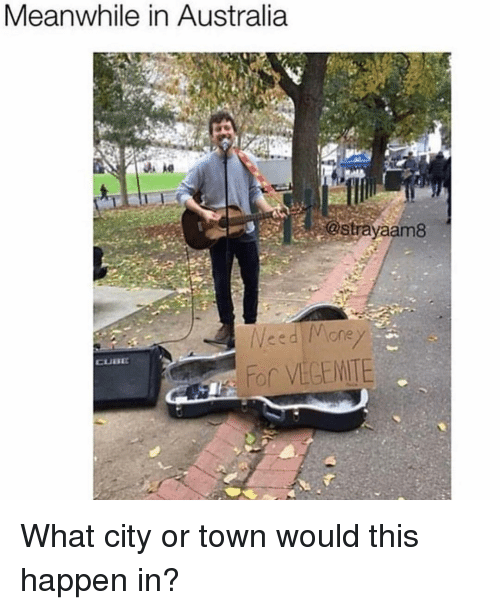 Memes, Australia, and 🤖: Meanwhile in Australia  astrayaam8 What city or town would this happen in?