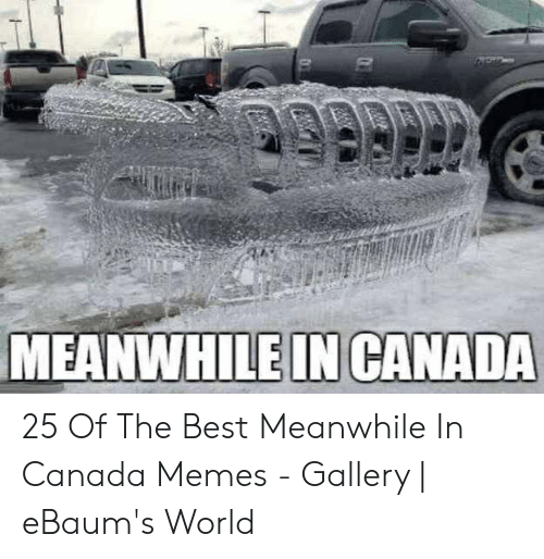 Canada Memes: MEANWHILE IN CANADA 25 Of The Best Meanwhile In Canada Memes - Gallery | eBaum's World