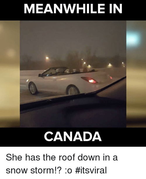 Memes, Canada, and 🤖: MEANWHILE IN  CANADA She has the roof down in a snow storm!? :o #itsviral