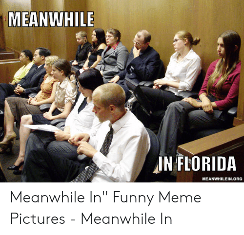 """Funny, Meme, and Florida: MEANWHILE  IN FLORIDA  MEANWHILEIN.ORG  AY Meanwhile In"""" Funny Meme Pictures - Meanwhile In"""
