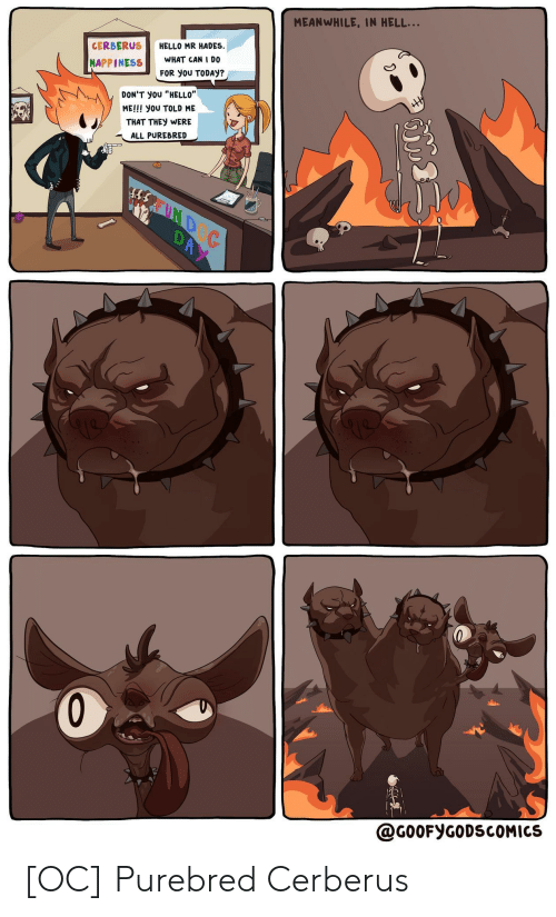 """Hello, Today, and Happiness: MEANWHILE, IN HELL...  HELLO MR HADES  WHAT CAN I D0  CERBERUS  HAPPINESS  FOR yoU TODAY?  HH  DON'T yoU """"HELLO""""  ME!!! you TOLD ME  THAT THEY WERE  ALL PUREBRED  REUND  DAY  @G00FYGODSCOMICS [OC] Purebred Cerberus"""