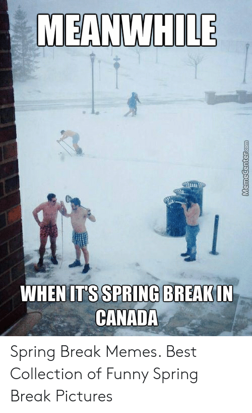 Funny Spring Memes: MEANWHILE  WHEN ITS SPRING BREAKIN  CANADA Spring Break Memes. Best Collection of Funny Spring Break Pictures