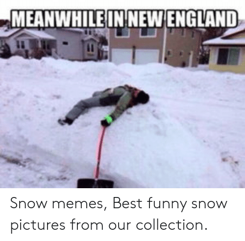 Funny Snow Memes: MEANWHILEIN NEW ENGLAND Snow memes, Best funny snow pictures from our collection.