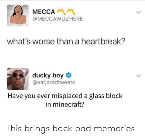 Bad, Minecraft, and Back: MECCA  @MECCAWUZHERE  what's worse than a heartbreak?  ducky boy  @eatjaredtweets  Have you ever misplaced a glass block  in minecraft? This brings back bad memories