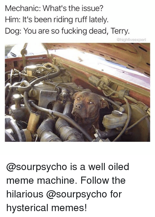 Meme Machine: Mechanic: What's the issue?  Him: It's been riding ruff lately.  Dog: You are so fucking dead, Terry  @highfiveexpert @sourpsycho is a well oiled meme machine. Follow the hilarious @sourpsycho for hysterical memes!