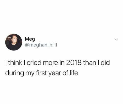 Life, Relationships, and Meg: Meg  @meghan_hilll  I think I cried more in 2018 than I did  during my first year of life