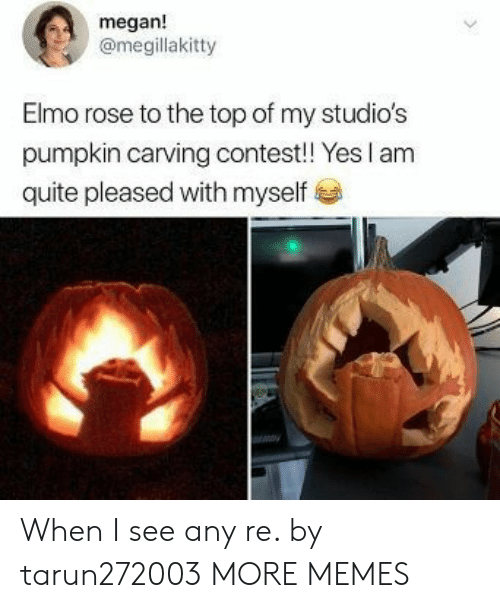 pleased: megan!  @megillakitty  Elmo rose to the top of my studio's  pumpkin carving contest! Yes I am  quite pleased with myself When I see any re. by tarun272003 MORE MEMES