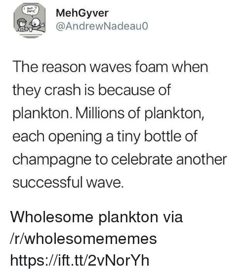 Waves, Champagne, and Plankton: MehGyver  @AndrewNadeauo  I he reason waves foam when  they crash is because of  plankton. Millions of plankton  each opening a tiny bottle of  champagne to celebrate another  successful wave Wholesome plankton via /r/wholesomememes https://ift.tt/2vNorYh