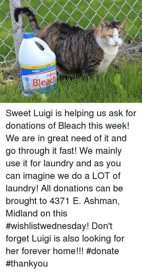 Meijer Bleac Sweet Luigi Is Helping Us Ask for Donations of