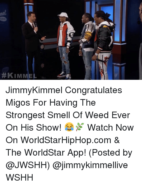 The Worldstar: mel  LIVE!  #KIMMEL  ley JimmyKimmel Congratulates Migos For Having The Strongest Smell Of Weed Ever On His Show! 😂🌿 Watch Now On WorldStarHipHop.com & The WorldStar App! (Posted by @JWSHH) @jimmykimmellive WSHH